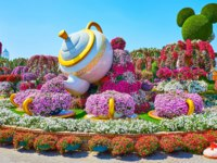 The scenic installation with teapot, pouring tea jet of pink petunia flowers to the cups, located in flower bed of Miracle Garden in Dubai. Фото efesenko - Depositphotos