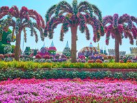 Landscaping of Miracle Garden with petunia and marigold flower beds, palm trees, covered with living flowers, fairy castle with flower walls in Dubai. Фото efesenko-Dep