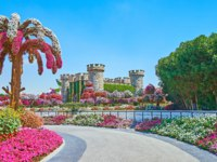 ОАЭ. Дубай. Сад чудес. The replica of medieval stone castle, surrounded by colored flowers of petunia and plants in Miracle Garden in Dubai. Фото efesenko-Deposit