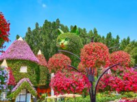 The hanging pots with bright petunia flowers in installation of giant cat and house, covered with living plants, Miracle Garden in Dubai. Фото efesenko - Depositphotos
