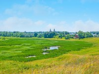 Суздаль. The open expanses of Ilinskiy meadow in Suzdal - the large wetland with small swamps and forests on background, Russia. Фото efesenko - Depositphotos