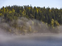 Россия. Карелия. Остров Валаам. Ladoga Lake, Valaam Island, Russia. Morning, fog over the water. Forest coast. Фото Viktor_AL-Depositphotos