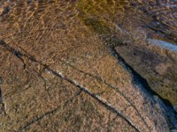 Stone bottom of the lake, rock formation. The wonderful island Valaam is located on Lake Lodozhskoye, Karelia. Фото GeneralSky-Depositphotos