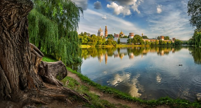 Россия. Москва. Панорама Новодевичьего монастыря. View of the lit evening sun Novodevichy convent with reflection in the pond from the old tree. Moscow. Фото