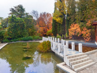 Россия. Сочи. Парк Дендрарий. The Arboretum  a Chinese court. Sochi, Russia. Фото Sivenkov - Depositphotos