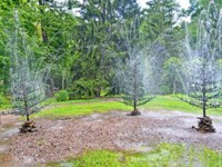 Санкт-Петербург. Петергоф. Фонтан шутиха Елочки. The Fir-trees fountain cracker in Nizhny park. Фото vodolej - Depositphotos