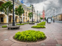 Невский проспект. Greens on Nevsky Prospect near the Gostiny Dvor in St. Petersburg and the tower of the City Duma in the distance. Фото yulenochekk-Deposit