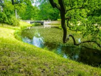 Санкт-Петербург. Царское село (Пушкин). Catherine park landscape in summer, Pushkin, St. Petersburg, Russia. Фото Sforzza - Depositphotos