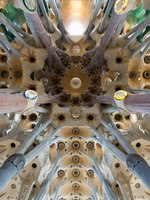Барселона. Храм Святого Семейства (арх. А.Гауди). Sagrada Familia. Barcelona. Фото Dmitry Raykin - Depositphotos