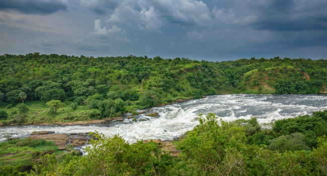Клуб путешествий Павла Аксенова. Уганда. Река Нил. Wide view of top of Murchison Falls in Nilo River, Uganda. Фото Saaaaa - Depositphotos