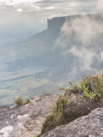 View from the Roraima tepui on Kukenan tepui at the mist - Venezuela, South America. Фото Curioso_Travel_Photography - Depositphotos